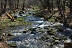 cascades-stream20160404_1429